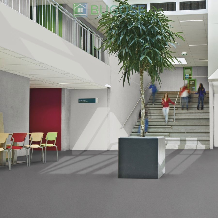 Sheet Vinyl Commercial Flooring Forbo Sphera Element Collection Anthracite 50006 Education University Scene 9
